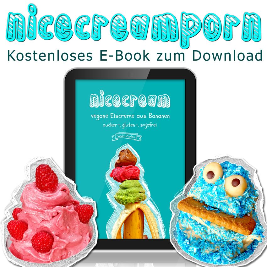 ebook_nicecream
